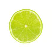 key-lime-2